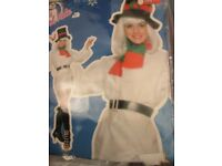 CHRISTMAS LADIES SNOWMAN FANCY DRESS OUTFIT SIZE 12/14 GREAT FOR A PARTY