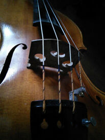 VIOLIN/FIDDLE and VIOLA lessons