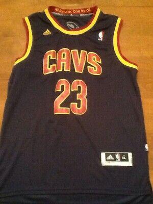 LeBron James SEWN Cleveland CAVS  Mens Size X-Large NBA #23 Jersey (Lakers)
