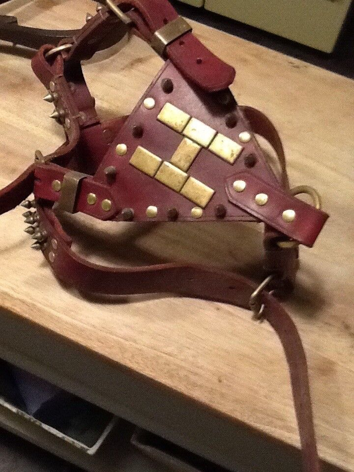 Large Staffy / Bull Dog Leather Harness