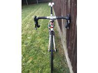 Bottecchia 8Avio road bike - 52cm frame size