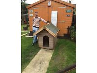 2 x LARGE DOG KENNELS - 48 INCHES LONG - BY 32 INCHES WIDE - ROOF WIDTH 36 INCHES WIDE - JUST £75