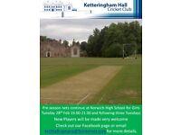 Friendly Cricket Club Seeks Players