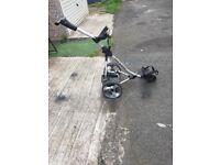 Pro rider electric golf trolly