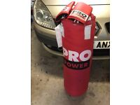 ProPower 3ft Punch bag and Gloves
