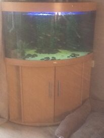 Juwel 190l corner fish tank. Complete set up including gravel, accessories, filter, fsh etc