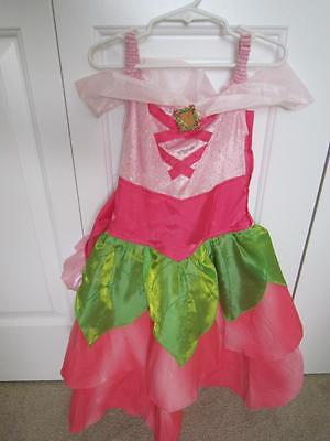 (DISNEY Sleeping Beauty HTF RARE Spring Princess Aurora Costume Small 5-6 UNIQUE)