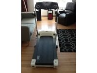 Everlast. Electric treadmill