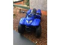 Adly 2 stroke auto quad