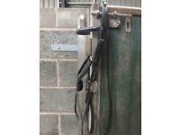 Black cob size shires grackle bridle, used once, great condition