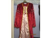 tudor lady style fancy dress dress age 9/10 just the dress great for party or play