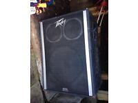 Peavy Speaker