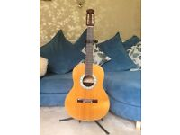 Tangle wood Odyssey Guitar