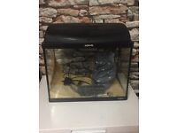 fish tank with eater and light in good condition in sheffield