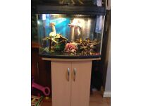 64ltr Fish Tank and Cabinet Stand