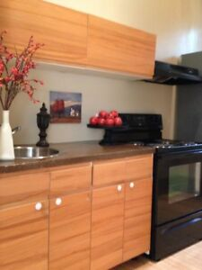 Bright&Beautiful 1 Bedroom Suite Located near HSC! 810 Beverly