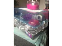 Large plastic hamster cage plus accessories