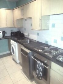 ONE BED FLAT NELSON ST, NEAR CITY CENTRE £390PCM