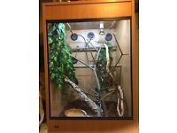 reptile lizard vivarium, food suppliments and thermostat