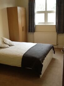 Double bedded room to let