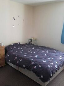 Double room in the centre town available from the 1st of August