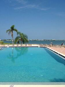 ST PETE BEACH CONDO FOR DEC and or JANUARY !