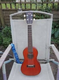 Ukelele - All Solid Wood Electric