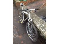 MOUNTAIN BIKE Very good conditions (adult)