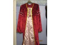 tudor queen style fancy dress age 9/10 great for a party or world book day