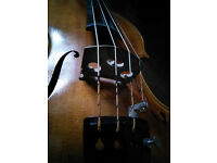 VIOLIN/FIDDLE and VIOLA teacher/lessons in Edinburgh and Glasgow
