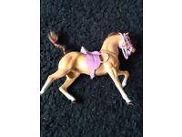 2 horses 1 Barbie