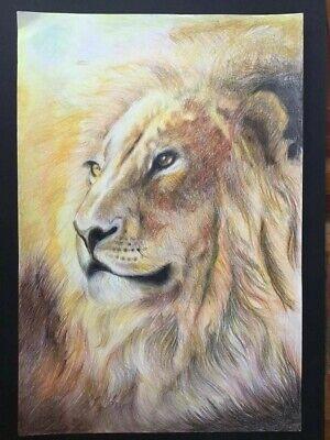 Lion King Portrait Wild Animal Stroke Pencil Color Original Painting 28 x 57 cm