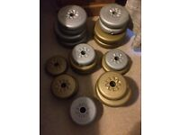 large selection of dumbells and bars