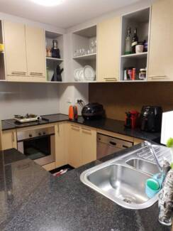 Housemate wanted in civic,canberra Canberra City North Canberra Preview