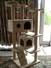 Sturdy Cat scratching post Doncaster Manningham Area Preview