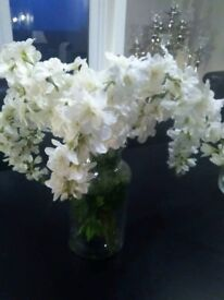 FREE GLASGOW DELIVERY-Gorgeous white flowers in clear vase-£10 ONO
