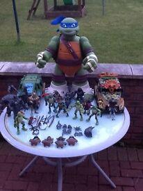 Teenage Mutant Ninja Turtles Bundle for sale