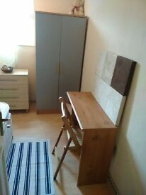 Big size double room in Isle of Dogs