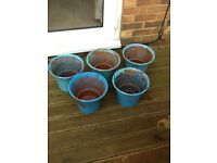 Free 5 Terracotta Pots