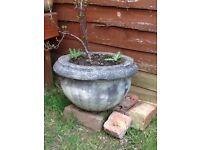 Ornate garden pot