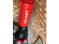 Gallant boxing punch bag with 10oz gloves