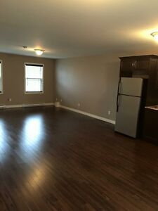 One bedroom above ground basement apartment in Paradise St. John's Newfoundland image 8