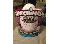 Purple hatchimal