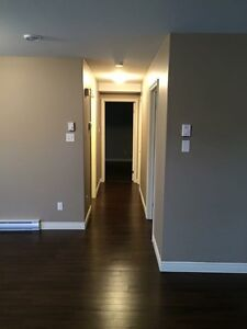 One bedroom above ground basement apartment in Paradise St. John's Newfoundland image 6