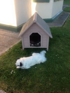 Dog House for small to medium family pet Latrobe Latrobe Area Preview