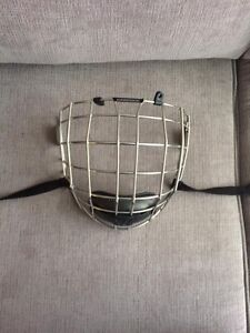 Hockey helmet and cages