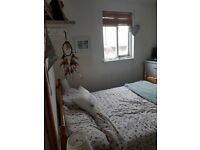 Short term let - double room - 11th August-3rd September