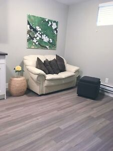 Brand new, small 2 bedroom basement suite in caswell hill.