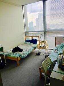 Looking for One Girl in a Friendly APT <Twin Room> Southbank Melbourne City Preview