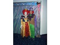 Ladies and gents mad hatter costumes